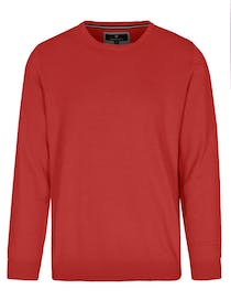 Rundhals Pullover - FRED - Pepper